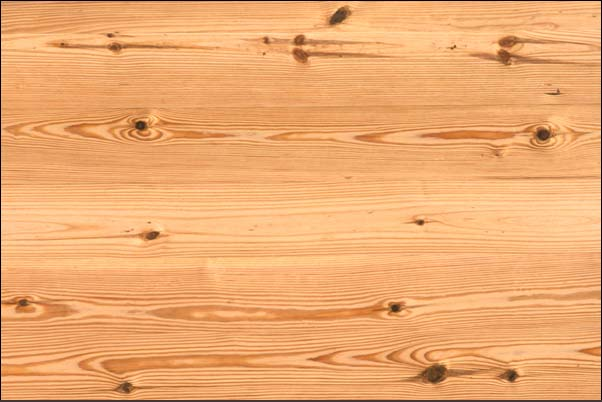 Pine Plywood Grain ~ Pine wood grain pdf project free woodworking plans